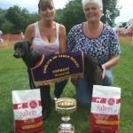 Baloo English NL Derby & Sup winner 2014
