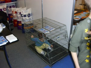 Foxys travel cage