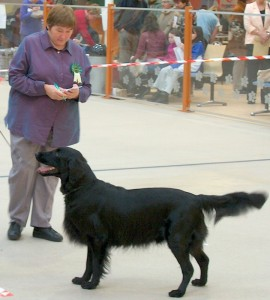 Polly Judging at New Mills show 020-001