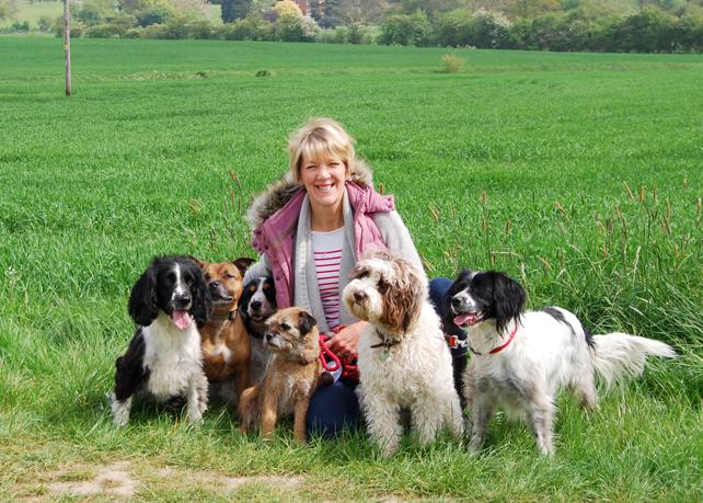 Suffolk Fairydogmother